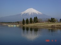050405tanukiko-fujisan